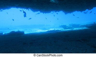 oceanic cave
