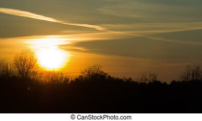 Sunset over the Trees and Clouds - Sunset over the trees and...