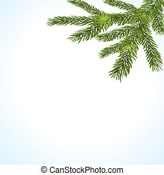 Green branches of a Christmas tree on a white background. illustration
