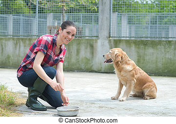 animal shelter volunteer feeding the dogs