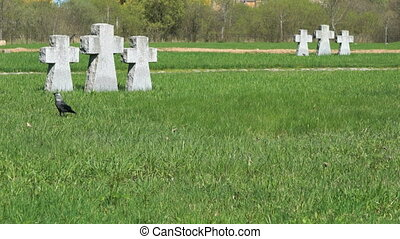 Crosses at German military memorial cemetery in Velikiy...