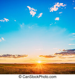Field Under Scenic Summer Dramatic Sky In Sunset Dawn Sunrise. S