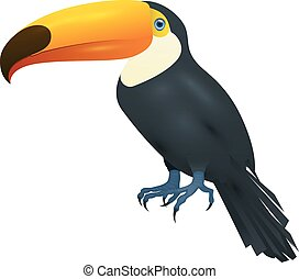 Toco Toucan, Isolated On White Background, Realistic Vector Illustration