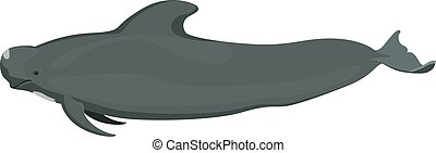 pilotwhale icon isolated on white background cartoon realistic whale