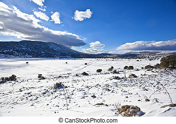 Beautiful winter landscape with snow covered mountain