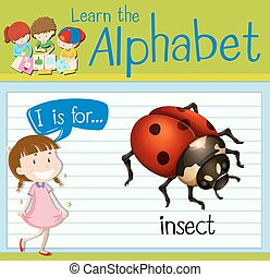 Flashcard letter I is for insect illustration
