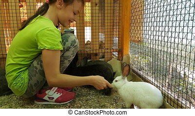 Little girl feeding decorative rabbits and communicates with...