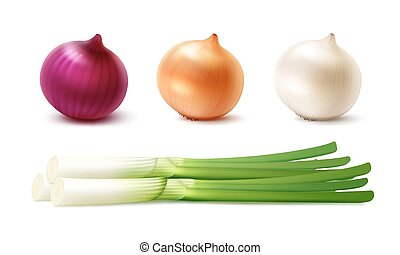 Vector Set of Fresh Whole Yellow Red White Green Onion Bulbs...