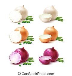 Vector Set of Fresh Whole and Sliced White Yellow Red Onion...