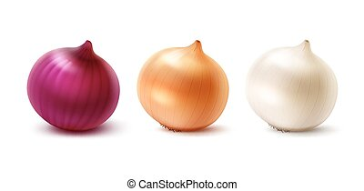 Vector Set of Fresh Whole Yellow Red White Onion Bulbs Close...