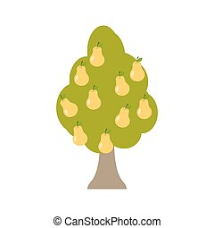 Pear tree isolated. Garden wood with pears on white...