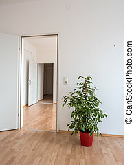 empty apartment with flowers stock - new apartment has been...