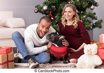 Sentado, árbol, joven, encantado, navidad, hombre