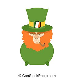 Leprechaun with red beard in pot. St. Patricks Day...