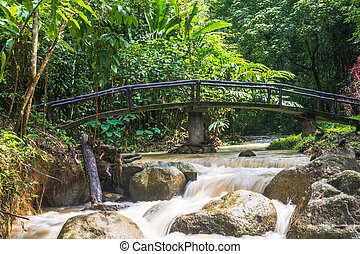 Huai-To Waterfall in famous Krabi seaside town, Thailand.