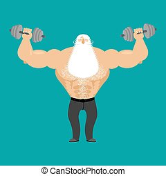 Retired athlete and dumbbells. Strong Santa fitness. Old man Sports. Powerful Senior Man with white beard