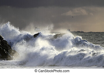 Autumn and winter sea storm at sunset light with spray and...