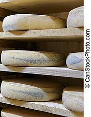 Comte Cheese at maturing cellar Franche creamery - Comte...