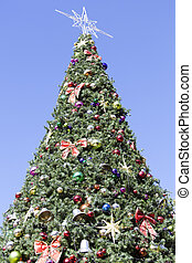 Dunedin Christmas Tree - The Christmas tree in a main square...