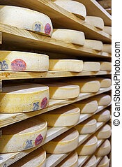 Pile of aging Cheese in ripening cellar creamery Franche...