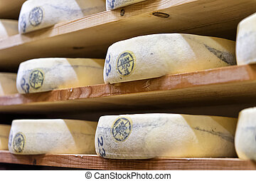 Stack of aging Cheese in maturing cellar Franche Comte...