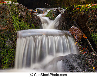 Autumnal mood in the forest with small creek waterfalls
