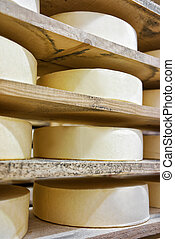 Row of aging Cheese in maturing cellar Franche Comte...