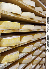 Pile of aging Cheese at ripening cellar creamery Franche...
