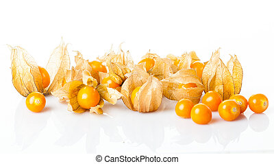 Ripe physalis isolated on a white background. Physalis...