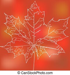 maple leaf - Image eco badge of maple leaf.