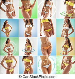 Collage of fit and sexy female bodies in swimsuits - Fat...