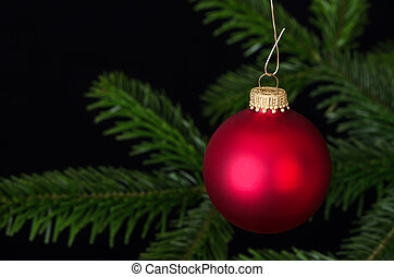Red glass bauble Christmas ornament over fir branch - Red...