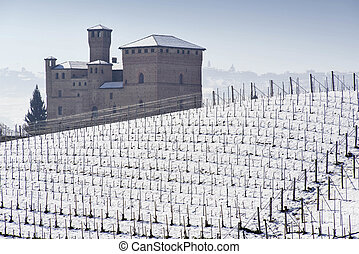 View of the Castle of Grinzane Cavour in winter with snow,...