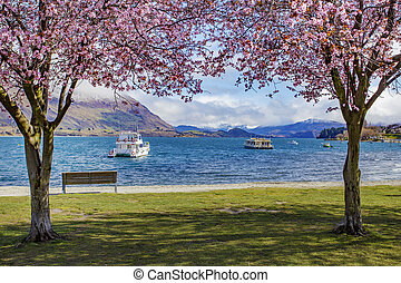 beautiful scenic of lake wanaka new zealand