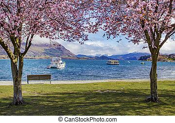 beautiful scenic of lake wanaka new zealand