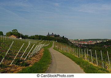 road with Vineyard landscape view to the castle Marienberg...