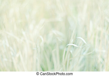 Sweet Meadow abstract background