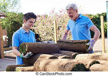 Landscape Gardeners Laying Turf For New Lawn