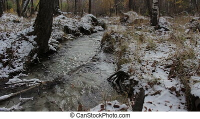 Stream in a snowy winter forest