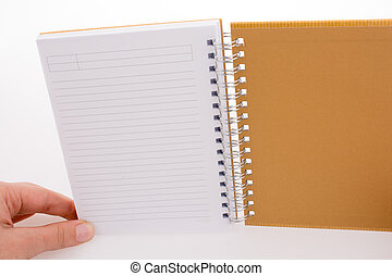 Hand holding a notebook on a white background