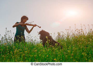 Dog watching girl playing violin in nature in a meadow