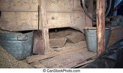 chaff and straw falling from grain sifting machine. farmer...