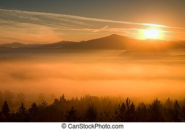 Misty dreamy landscape at begining of November. Colors of...