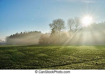 Landscape with sun rays through fog