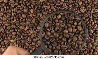 Examination using a magnifying glass rotating coffee beans....