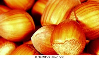 Looped: pile of shelled hazelnuts spinning slowly - Pile of...