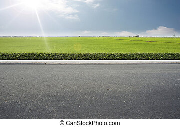 Roadside view and green grass on blue sky.