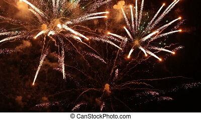 Festive fireworks in the night sky