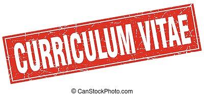curriculum vitae square stamp
