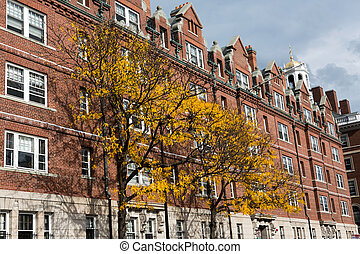 Cambridge street - View of buildings in the city center of...